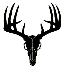 256x288 Buck Clipart Deer Skull