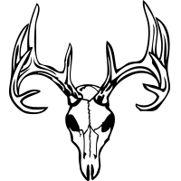 200x200 Deer Skull 1 Deer Skull Window Decal [] Grfx Graphic