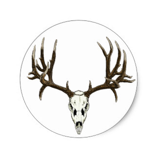 324x324 Deer Skull Stickers Zazzle