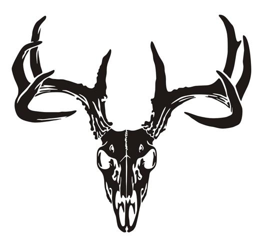 520x480 Deer Skull V6 Decal Sticker