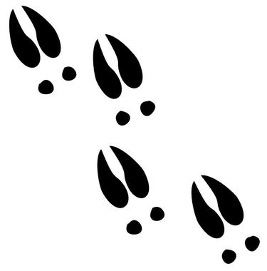 375x380 Deer Tracks Decals Md Window Stickers