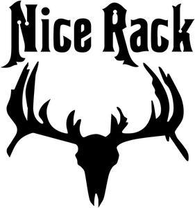 281x300 Nice Rack Buck Antlers