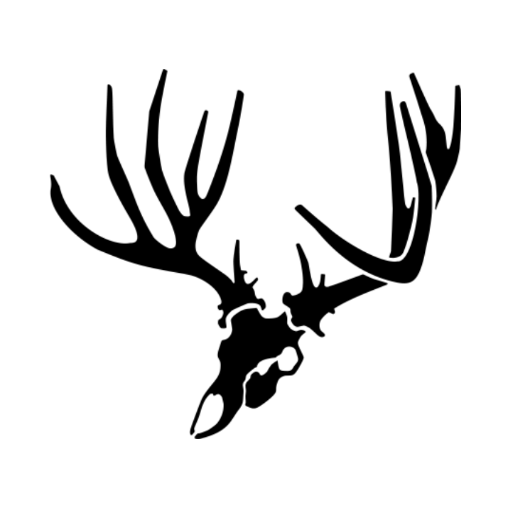 715x715 Angled Mule Deer Skull Decal