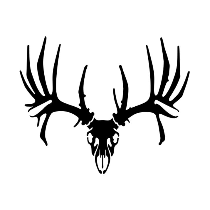 715x715 Whitetail Skull Decal