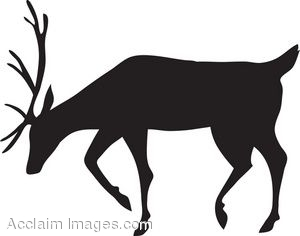 300x236 Clipart Picture Of A Reindeer