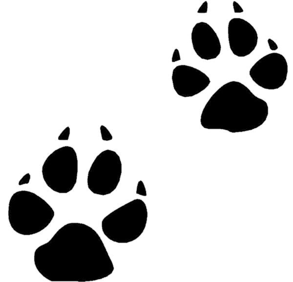 600x577 Animal Paw Prints Clipart