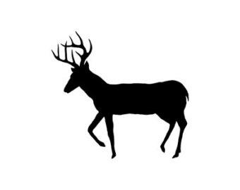 340x270 Buck Clip Art European Mount Deer Skull Clip Art Deer Track Clip