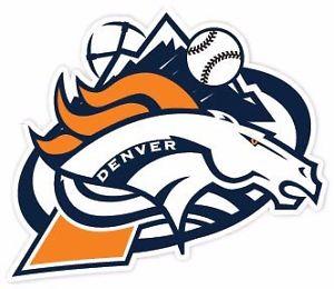 300x260 Denver Broncos Avalanche Rockies Nuggets Fan Vinyl Sticker Decal