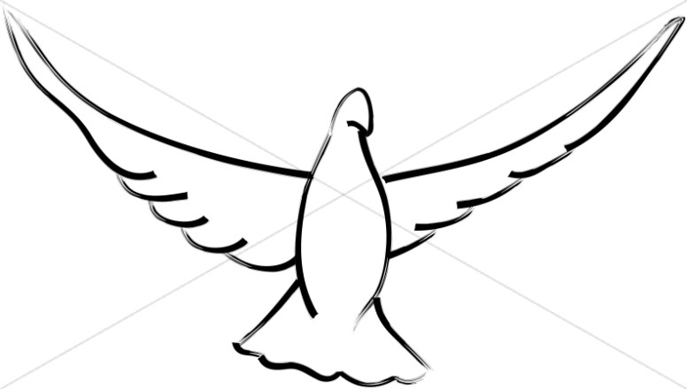 776x440 Open Wings Dove Dove Clipart