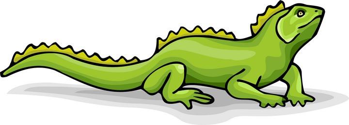 720x259 Desert iguana clipart