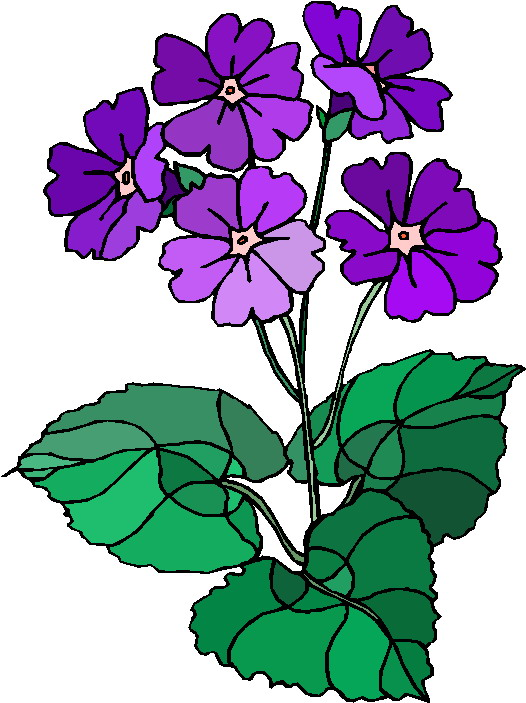 526x703 Flowering plant clipart