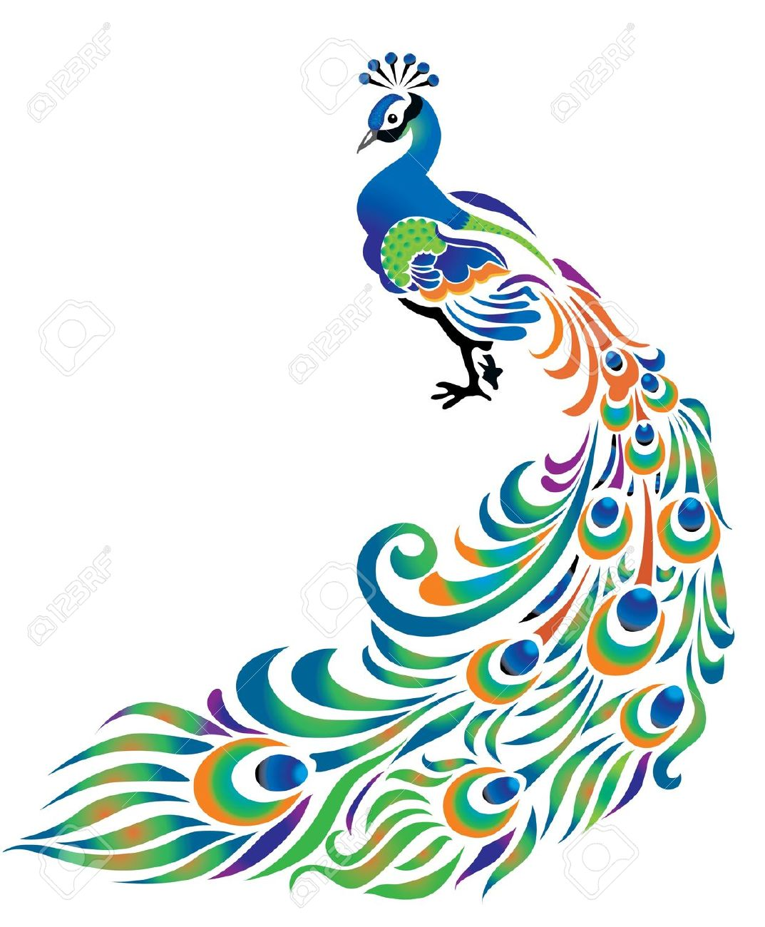 1073x1300 Design clipart peacock