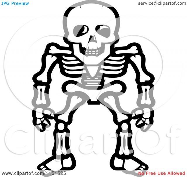 640x606 Dinosaur Skeleton Coloring Page Clipart Panda