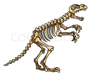 320x260 Dinosaur skeleton Stock Vector Colourbox