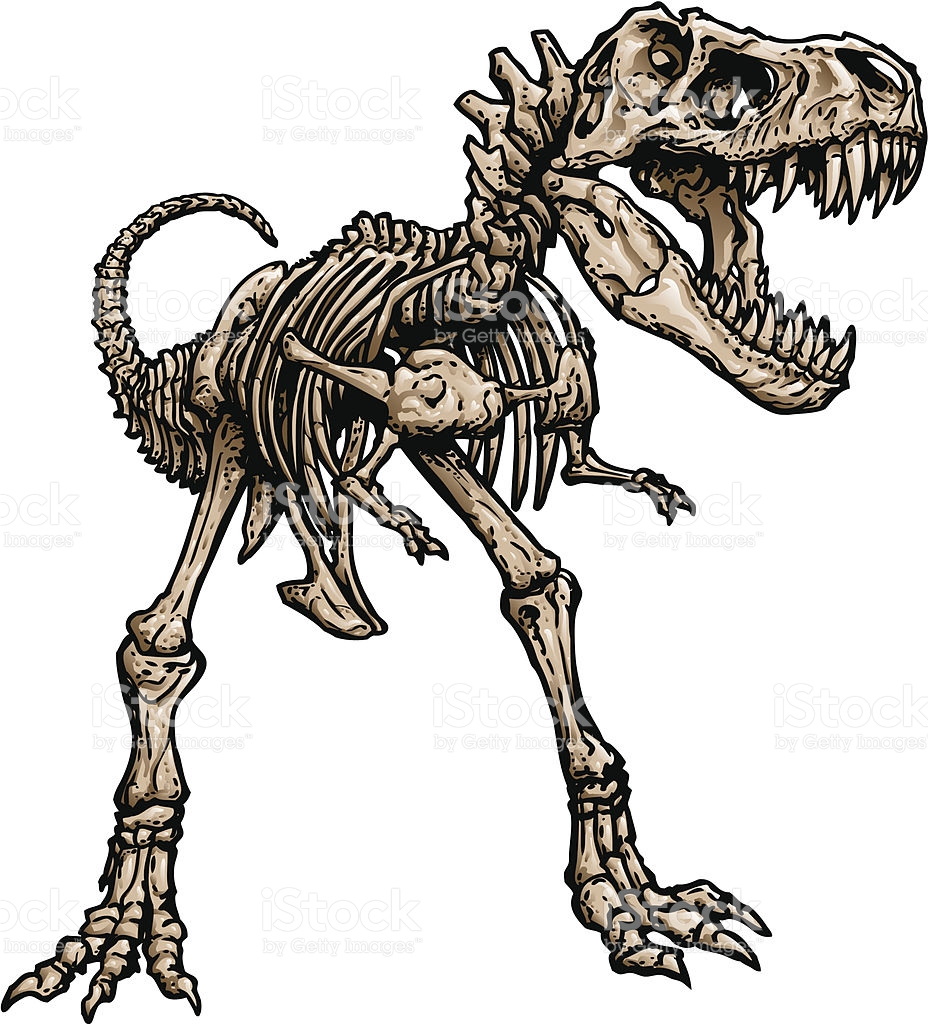 928x1024 Skeleton clipart t rex