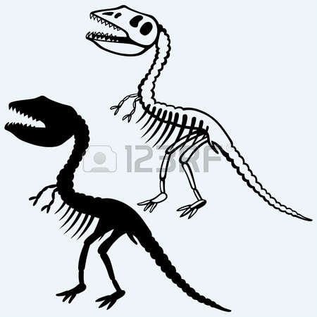 450x450 Fossil Clipart Paleontology