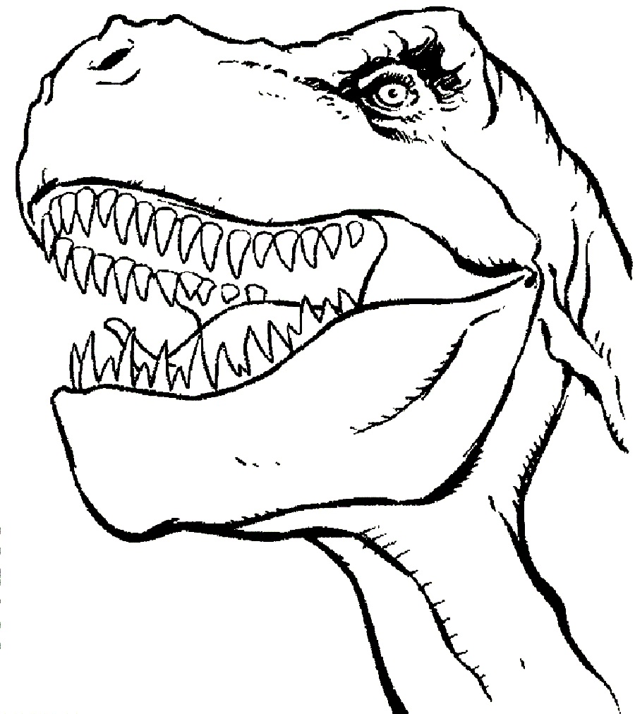 900x1012 Clip Art Dinosaur Outline Clip Art