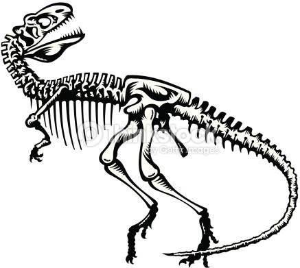 437x391 Dinosaur Skeleton Clipart