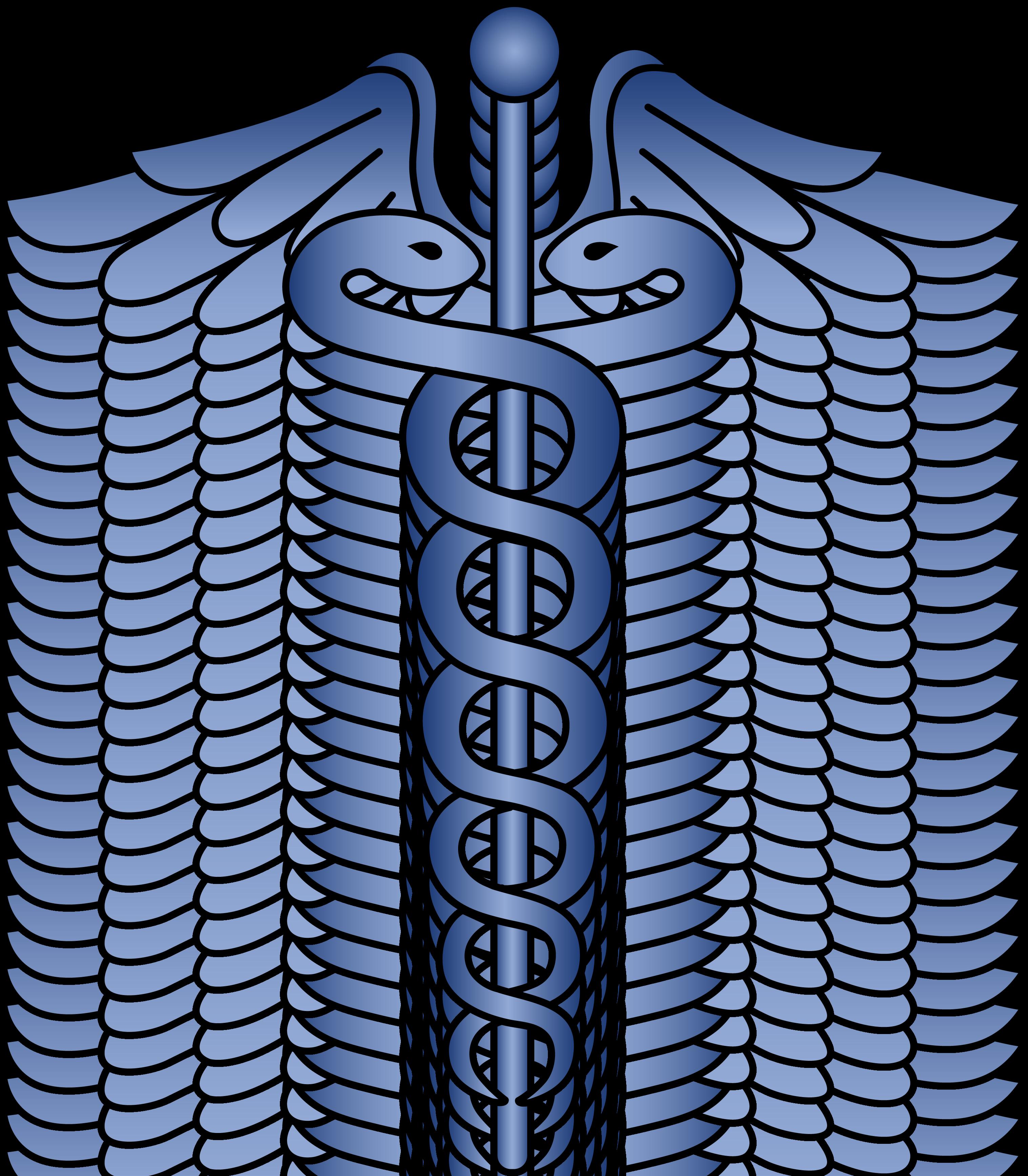 3034x3471 Blue Caduceus Logo Design