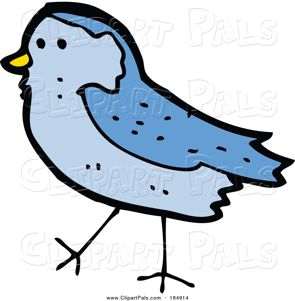 1024x1044 Royalty Free Bird Stock Friend Designs