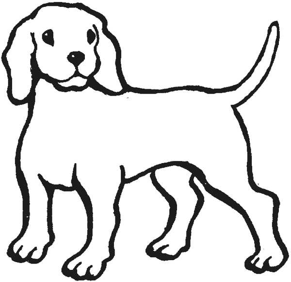 600x581 Puppy Clipart Outline
