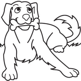 268x268 Coloring Page Dog Bone Kids Drawing And Coloring Pages