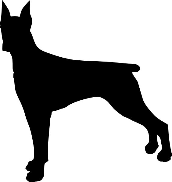 564x597 Doberman Dog Bone Clipart, Explore Pictures