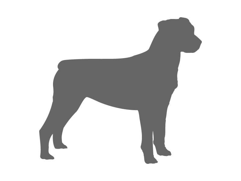 800x600 Dog Stencil Shapes
