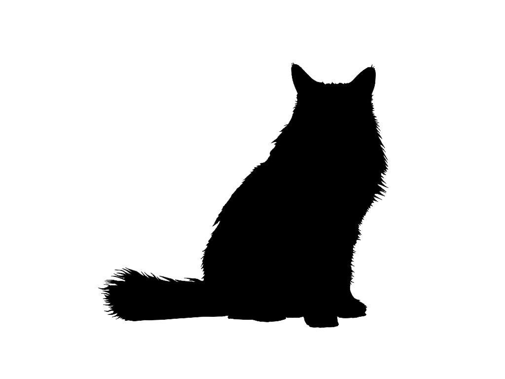 1024x768 Long Haired Cat Silhouettes