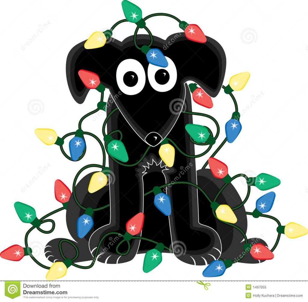 1024x1004 Christmas ~ Christmas Outstanding Tangled Lights Picture Ideas Dog