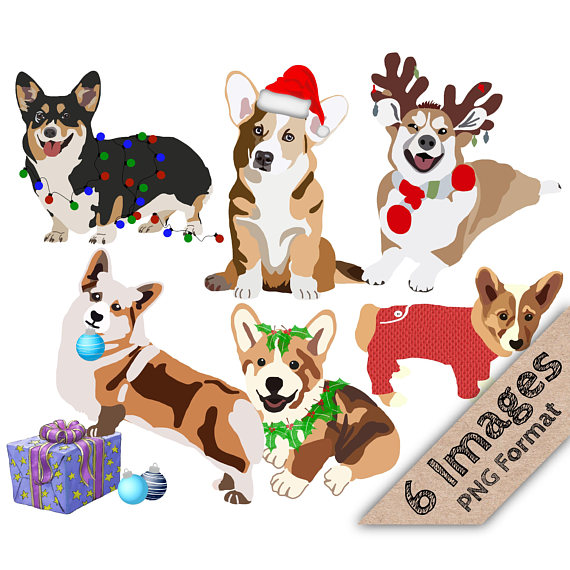 570x570 Christmas Corgis Holiday Corgi Christmas Clipart Holiday