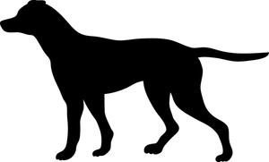 300x181 Free Pointer Dog Clip Art Image