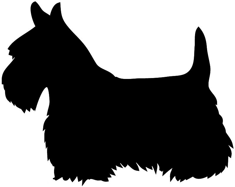 800x635 Scottie Dog Clipart