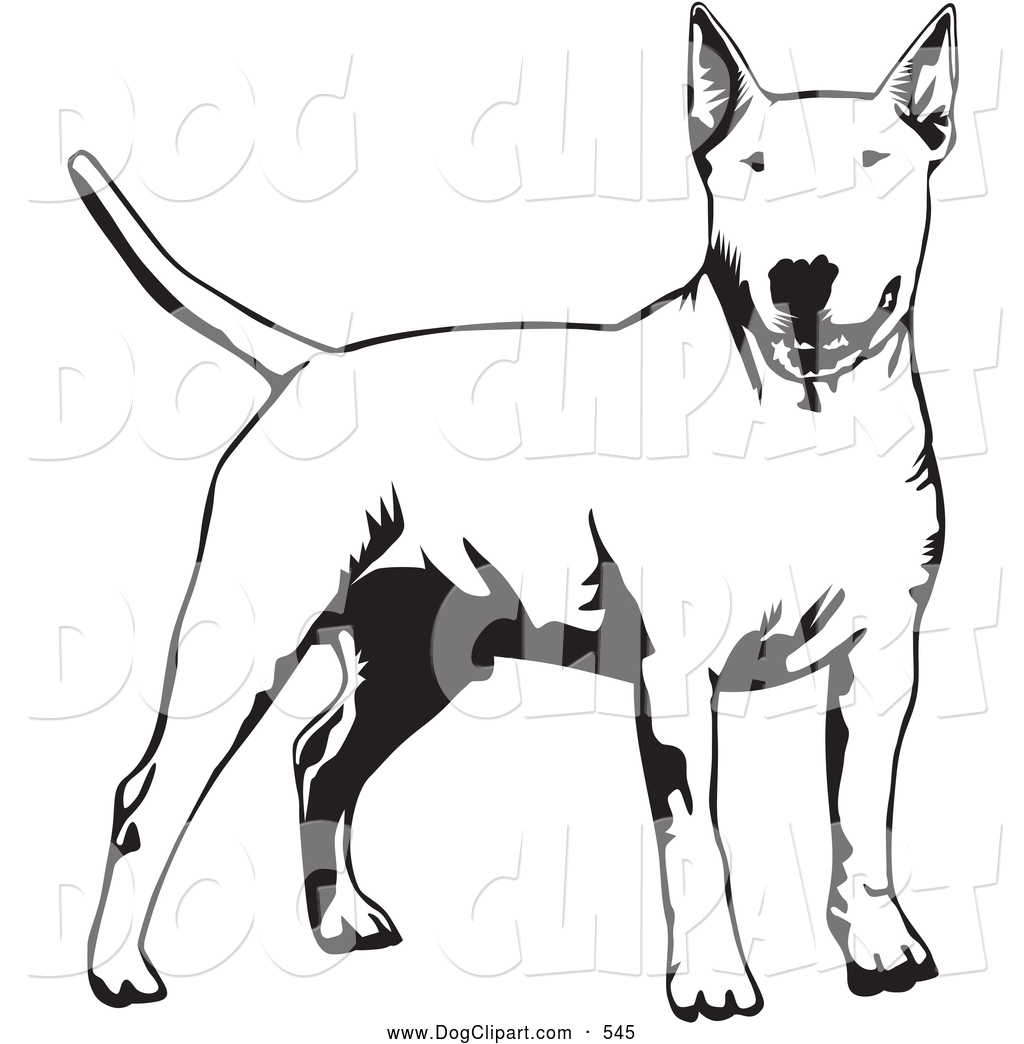 1024x1044 Clip Art Of A Cute And Alert Bull Terrier Dog Holdings Its Tail