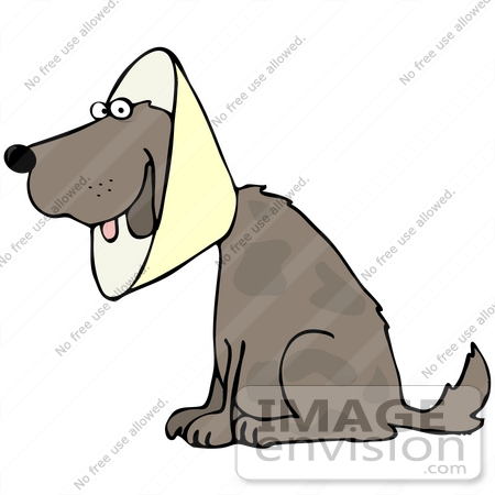 450x450 Clip Art Graphic Of A Recovering Dog Wearing A Collar Cone