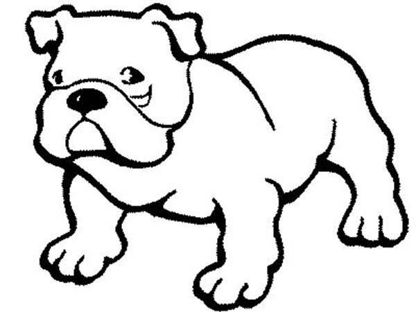 600x450 Pitbull Dog Coloring Page Color Luna