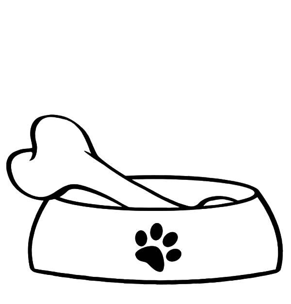 600x627 Bones Clipart Dog Bowl