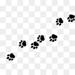 260x260 Dog Footprints Png Images Vectors And Psd Files Free Download