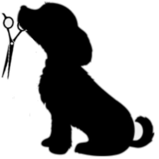 512x512 Pet Grooming, Pet Groomer