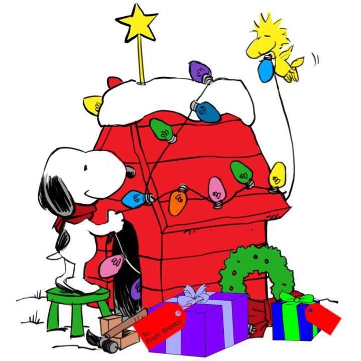 719x719 Pin By Susan Phillips On Snoopy Dog And Woodstock