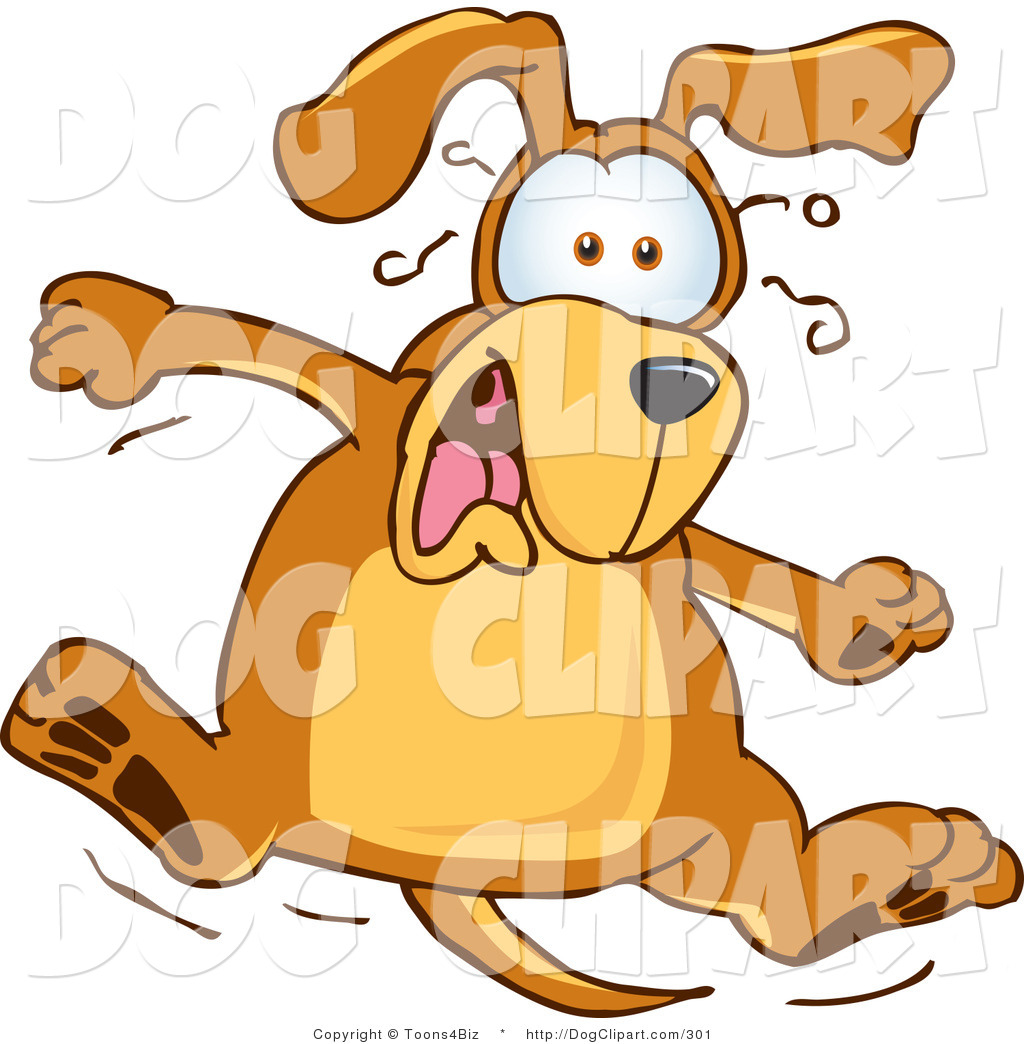 1024x1044 Royalty Free Scared Stock Dog Designs