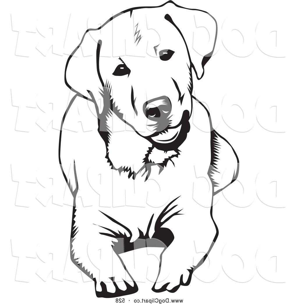 1024x1044 Best Free With Labrador Retrievers Head Clip Arts On Dog Laying