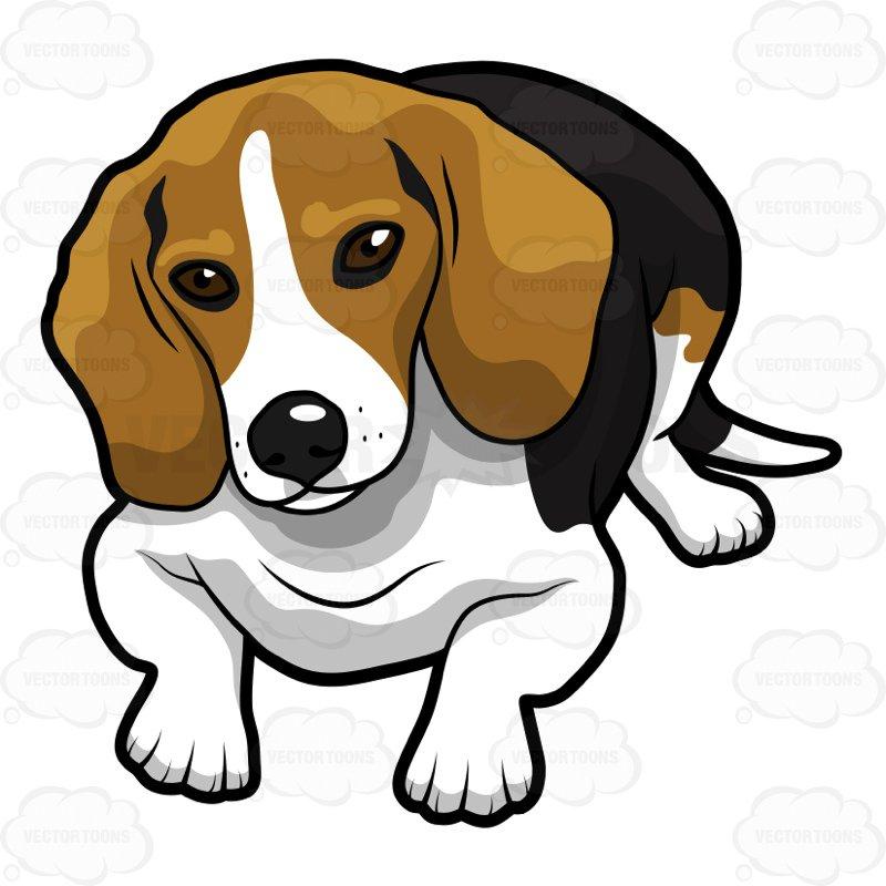 800x800 Cute Beagle Lying Down Looking Ahead Cartoon Clipart