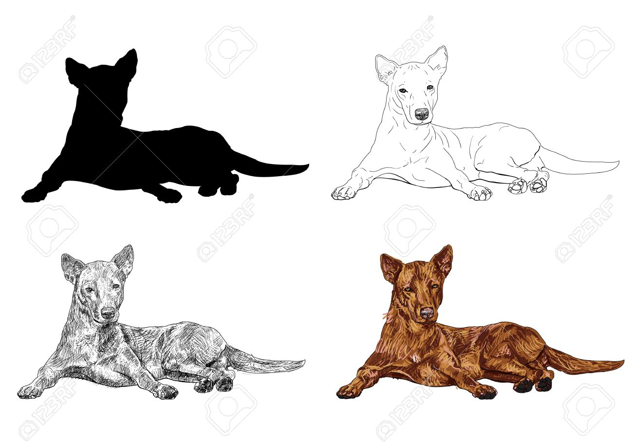 1300x910 Dog Laying Down Clipart