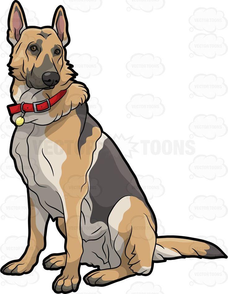 736x948 The Best German Shepherd Wallpaper Ideas German
