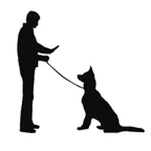 300x300 Dog Leash Clipart