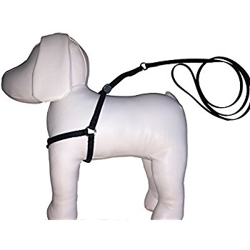 350x350 Easiest Dog Harness And Leash Combo