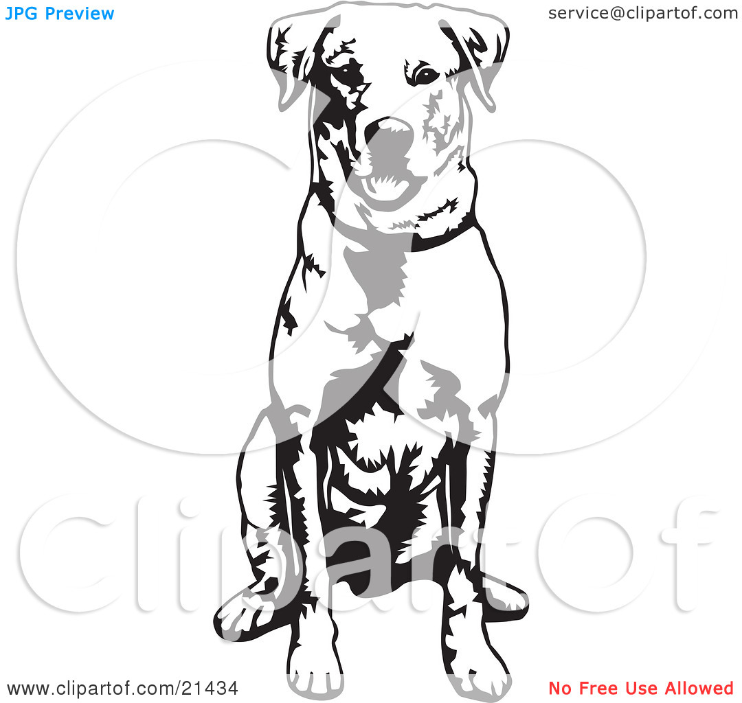 1080x1024 Rally Obedience Clipart