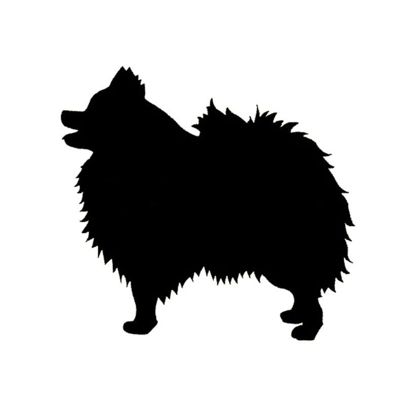800x800 Wholesale 5pcs,10pcs,1413cm Pomeranian Dog Bumper Sticker Species