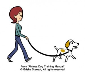 300x255 How To Train A Dog To Stop Pulling On The Leash Grisha Stewart